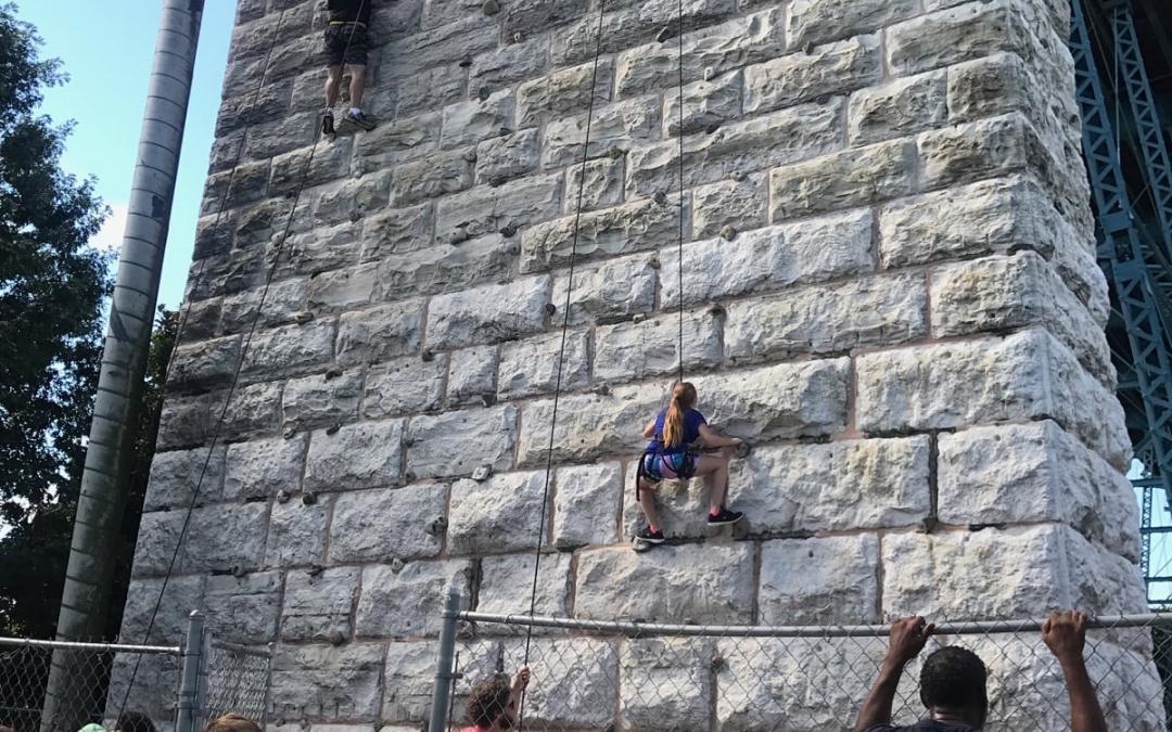 Walnut Wall